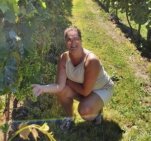 Hof v Twente in de wijngaard